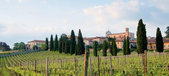 Franciacorta and Monte Isola by private Minivan from Milan or Verona