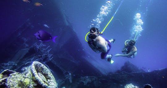 Aventura de snorkel y snorkel en Aruba