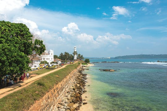 Galle private tour with Virgin White Tea Plantation and Factory from Colombo