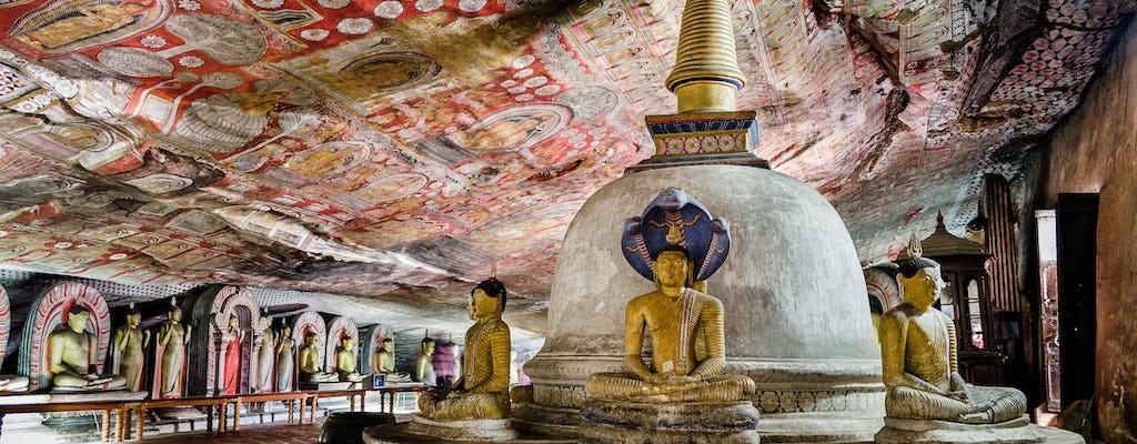 Excursão a pé pela rocha de Sigiriya e pelo templo da caverna de Dambulla