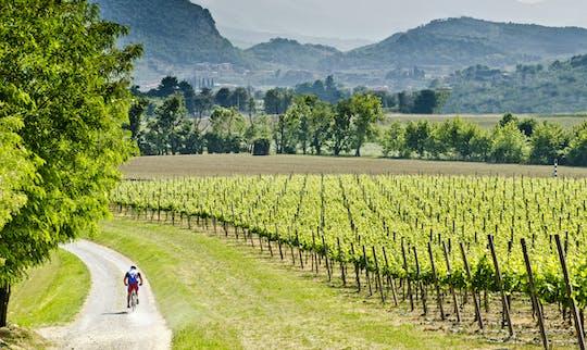 Wycieczka rowerowa Franciacorta z lunchem i wizytą w winnicy prywatnym minivanem z Mediolanu lub Werony