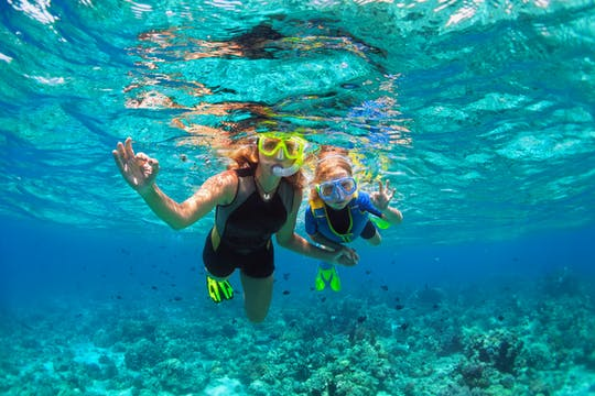 Tour di snorkeling pomeridiano in catamarano Palm Pleasure