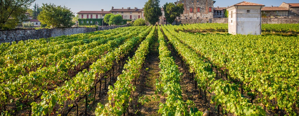 Franciacorta and Monte Isola luxury tour by private Minivan