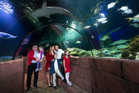 SEA LIFE Hannover-tickets