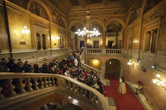Private walking tour of Budapest with a visit to the Opera and a concert