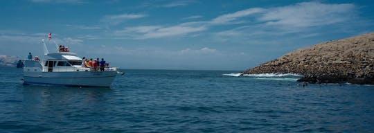Paseo en barco por las islas Palomino