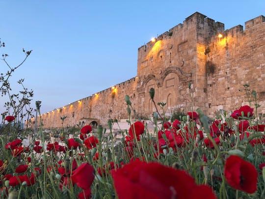 Excursão de um dia inteiro em Jerusalém e no Mar Morto saindo de Tel Aviv