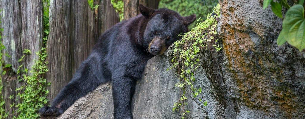 Зоопарк Лоури парк в городе Тампа по