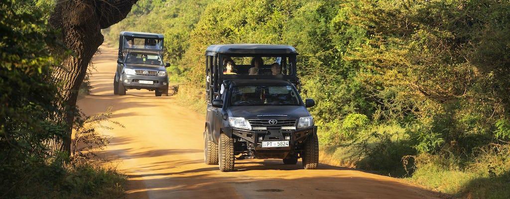Walbeobachtung, Yala National Park und Galle 2-tägige Tour von Bentota