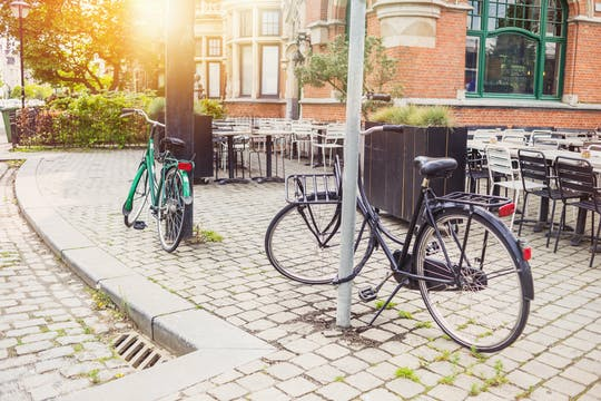Частная велосипедный тур Антверпен за пределы центра города
