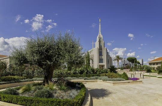 Rome tour by minivan with visit to the Rome LDS Temple
