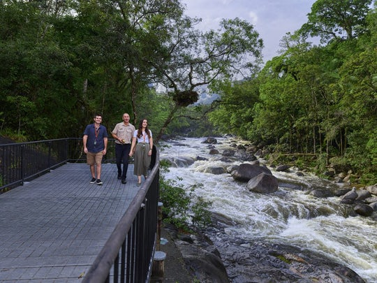 Full-day Cape Tribulation, Daintree and Mossman Gorge with lunch