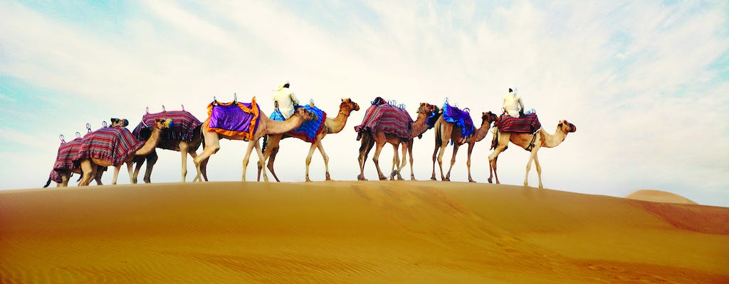 Private morning safari with breakfast in Bedouin tent and camel ride