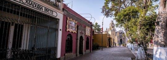 Pachacamac archaeological complex, Pantanos de Villa and Barranco private tour