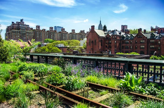 New York City High-Line and Hudson Yards walking tour