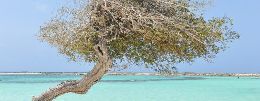 Off-road safari en snorkelen bij Aruba Baby Beach