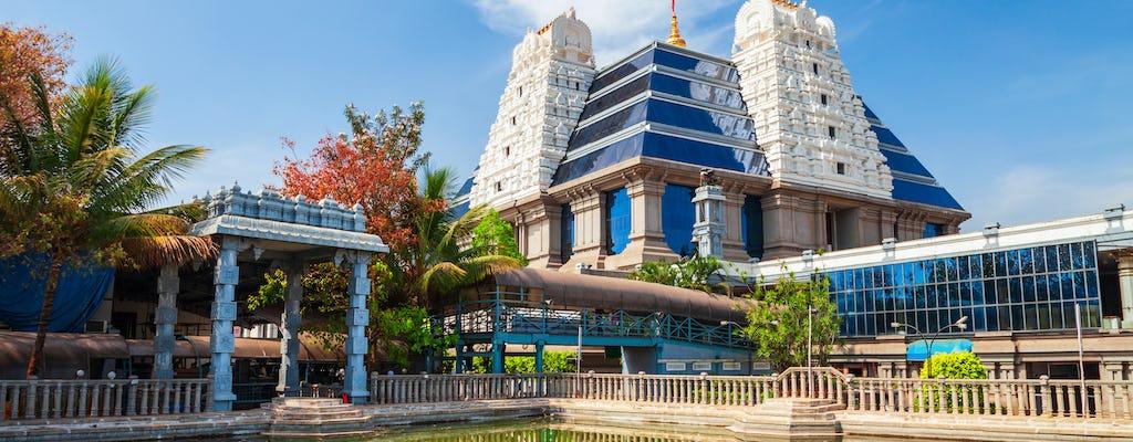Tour di tre templi iconici a Delhi con cerimonia Aarti