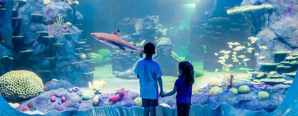 SEA LIFE Sydney Aquarium tickets with Combo Pass option