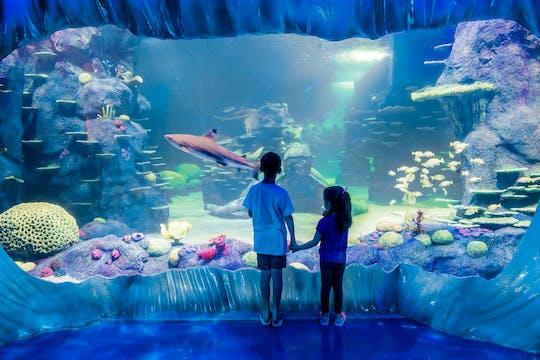 Entradas al acuario Sea Life de Sídney con opción de pase combinado