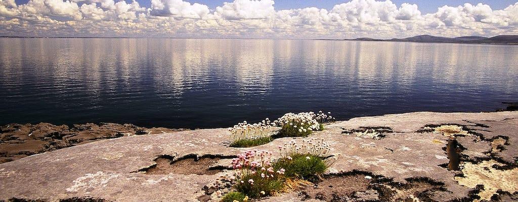 Visite de l'île d'Aran et des falaises de Moher avec croisière