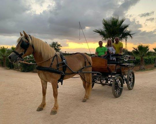 Pferdekutschentour in der sizilianischen Landschaft