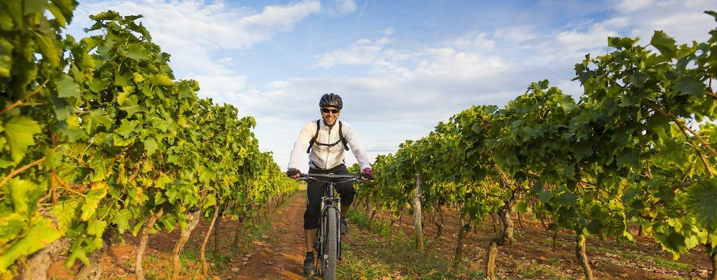 E-Bike Weintour rund um Todi