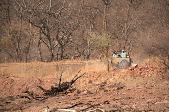 Safári 4x4 de meio dia no Parque Nacional de Ranthambore