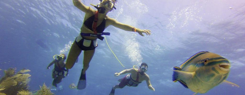 Expérience de plongée sous-marine sur l'île de Palm