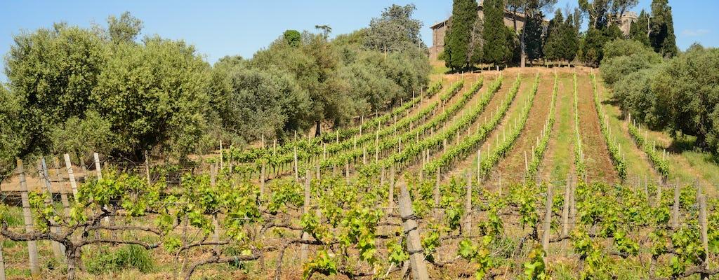 Półdniowa wycieczka po rzymskich winnicach i degustacja wina
