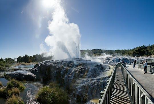 Esperienza nella valle geotermica di Te Puia