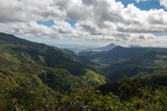 Mauritius Ebony Forest and hiking tour