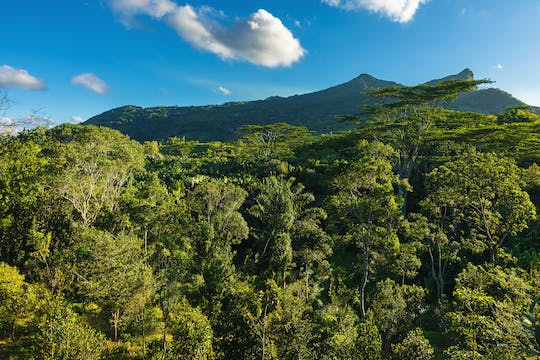 Mauritius Ebony Forest Chamarel entrance tickets