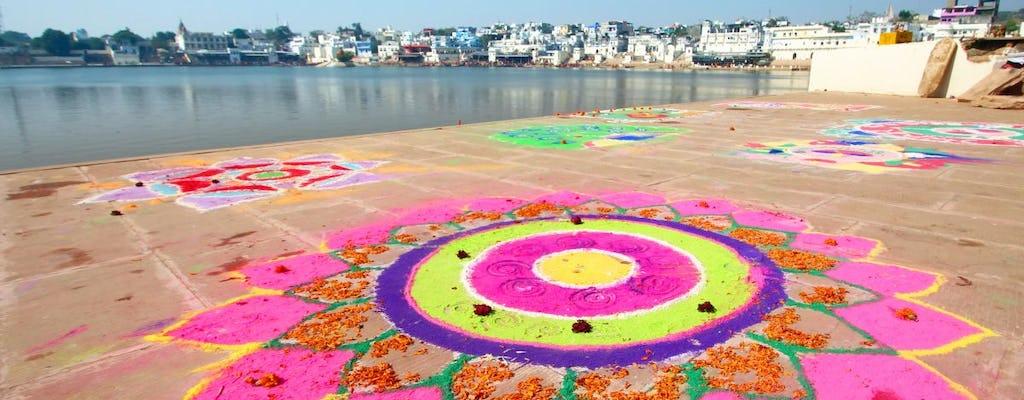 Старых традиционных индийских домах тура с опытом живопись