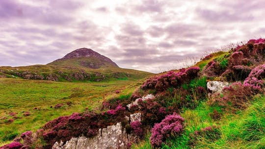 Connemara National Park self-guided day trip from Galway City