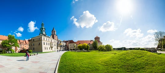 Skip-the-line Wawel Castle-ticket en privétour door de kathedraal