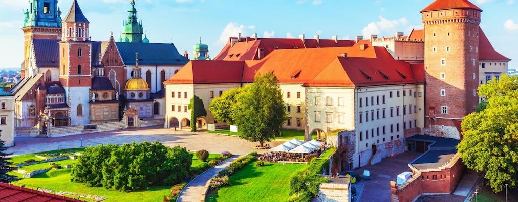 Skip-the-line privétour door Wawel Castle