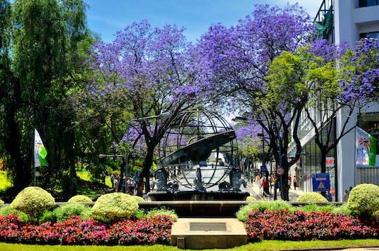 Visite express du jardin botanique de Funchal en tukxi
