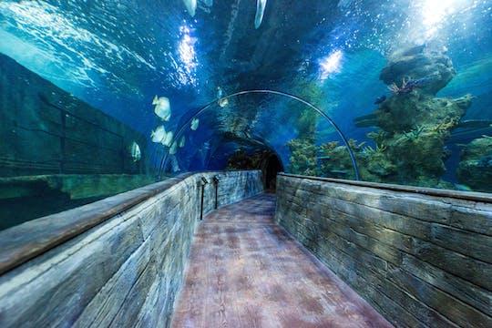 L'aquarium national de Malte - billet