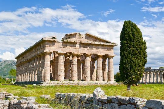 Visita guiada a Paestum y degustación de mozzarella desde Salerno
