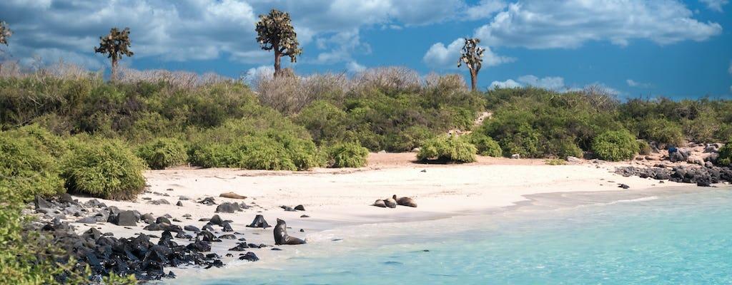 Excursion de plongée en apnée à Santa Fe et Playa Escondida