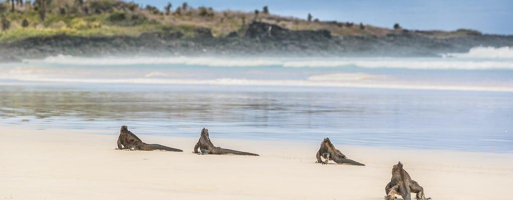Viagem de um dia à praia Tortuga