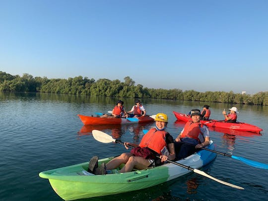 Abu Dhabi mangrove kayaking tour