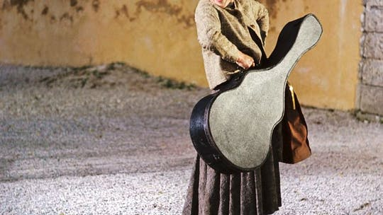 Private Sound of Music-tour van een halve dag vanuit Salzburg