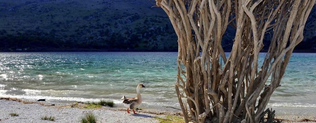 Tour della Creta incontaminata meridionale da Rethymno