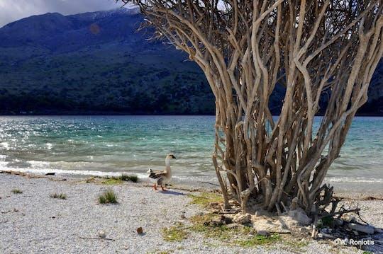 Тур по южному нетронутому Криту из Ретимно