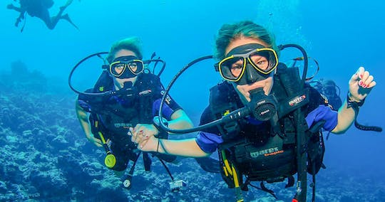 Scuba dive trip with BBQ lunch and transfer from Dubai