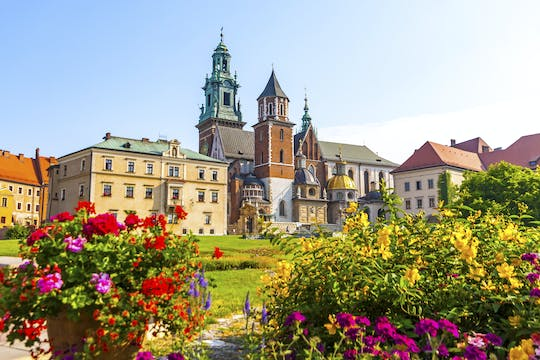 5-hour Wawel Castle skip-the-line tour with Old Town