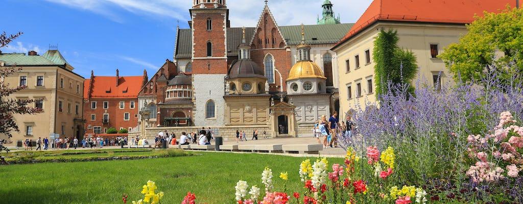 Entrada y visita guiada a la catedral de Wawel
