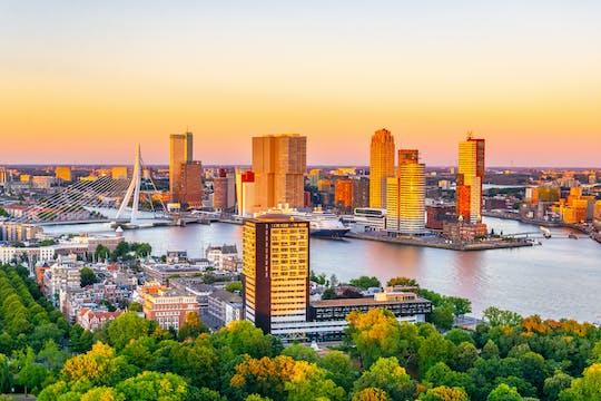 Visite à pied du rivage de Rotterdam avec billet d'entrée au musée maritime