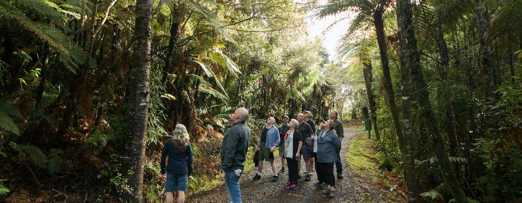 Wilderness Experience tour naturalistico di mezza giornata
